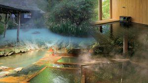 สิ่งมีชีวิตบนโลกอาจจะเริ่มในน้ำพุร้อนที่ไม่เป็นมิตร